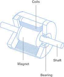 Design of a BLDC and SSV motor, respectively with rotor magnet, stator winding, bearing, and motor shaft.