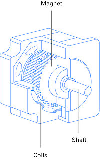 Hybrid stepper motor design with a soft iron stator and toothed permanent magnet rotor.
